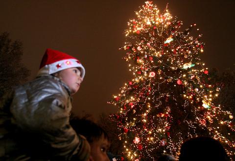 Коледната елха през призмата на фолклора 96